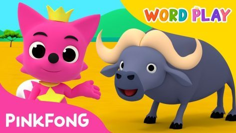 Buffalo Word Play Pinkfong Songs for Children